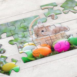 Εκτύπωση φωτογραφίας σε puzzle